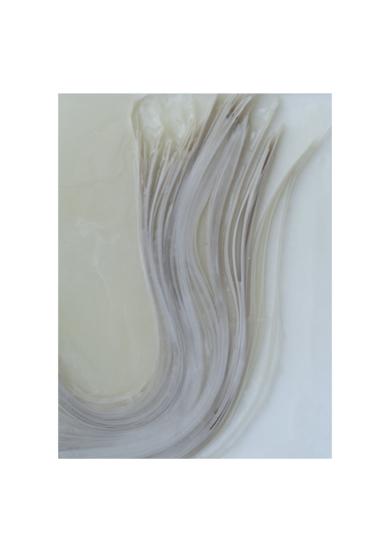 algas|Escultura de pareddebeatriz cárcamo| Compra arte en Flecha.es