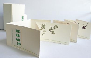 Herbario|Obra gráficadeAna Valenciano| Compra arte en Flecha.es