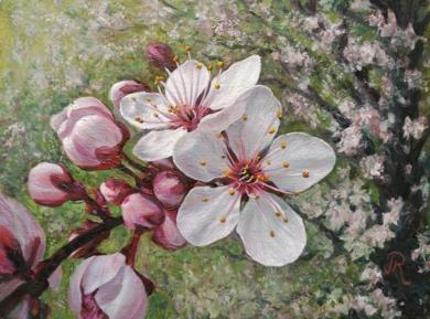 Flores de cerezo|PinturadeJavier Ramos Julián| Compra arte en Flecha.es