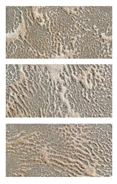 Liquidvibration Tríptico Study I /2017|Escultura de pareddeKaren Hain| Compra arte en Flecha.es