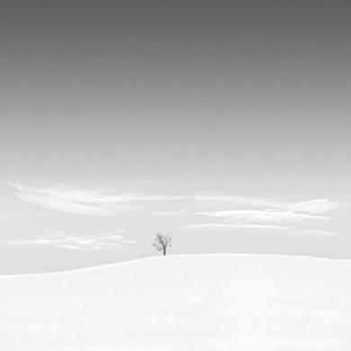 Snowscape  09|FotografíadeAndy Sotiriou| Compra arte en Flecha.es