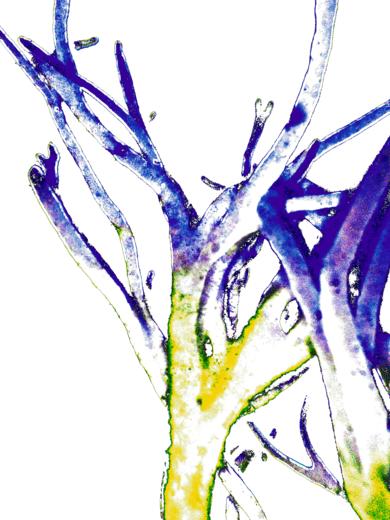 Brío 2|DigitaldeMarta Caldas| Compra arte en Flecha.es