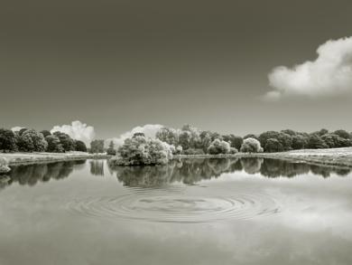 Water series 19  :  Richmond Park, London.|FotografíadeAndy Sotiriou| Compra arte en Flecha.es
