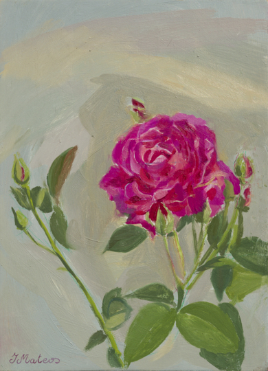 Rosas 5|PinturadeIgnacio Mateos| Compra arte en Flecha.es