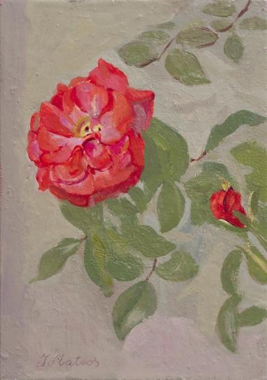 Rosas 15|PinturadeIgnacio Mateos| Compra arte en Flecha.es
