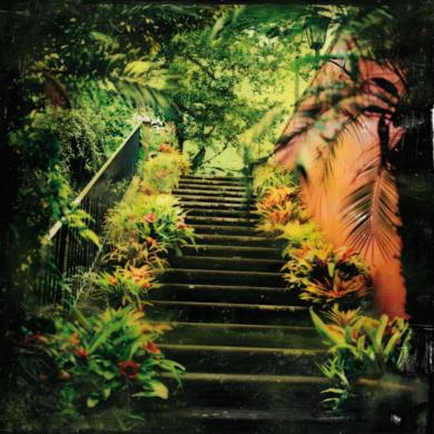 Subir y Bajar|FotografíadePasquale Caprile| Compra arte en Flecha.es