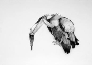 Rapaz|DibujodeJose Juan Botella| Compra arte en Flecha.es