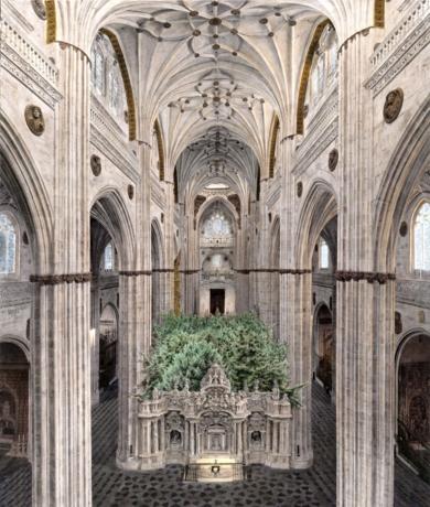 Crece el Interior|FotografíadeCarlos Arriaga| Compra arte en Flecha.es