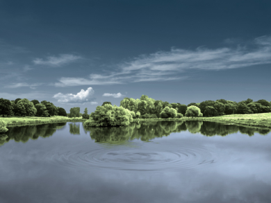Water series  #19  :  Richmond Park, London.|FotografíadeAndy Sotiriou| Compra arte en Flecha.es