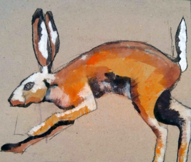 Hare|DibujodeAntonio  Vázquez| Compra arte en Flecha.es