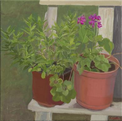 Dos plantas|PinturadeIgnacio Mateos| Compra arte en Flecha.es