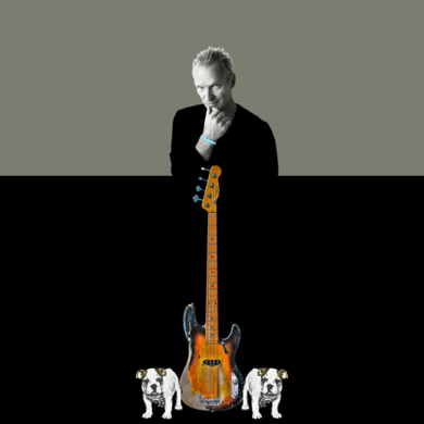 Sting|CollagedeGabriel Aranguren| Compra arte en Flecha.es