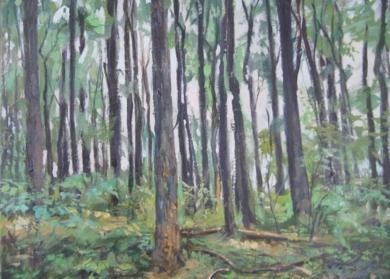 bosque, de la serie bosques de los Apalaches de EEUU|Pinturadejose luis fernandez sanchez| Compra arte en Flecha.es