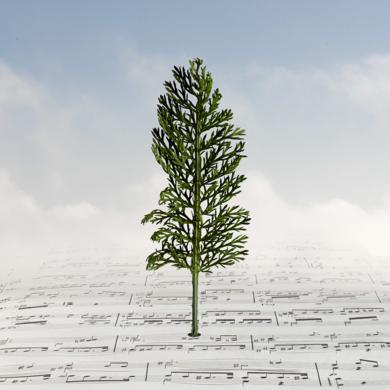 Paisaje en una partitura|FotografíadeLeticia Felgueroso| Compra arte en Flecha.es