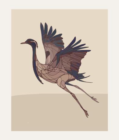Crane II|IlustracióndeTaquen| Compra arte en Flecha.es