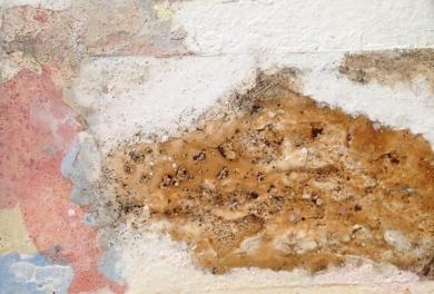 Septiembre|PinturadeJose Luis Muñoz| Compra arte en Flecha.es
