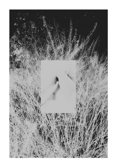 Fragil-2|FotografíadeDaniel Comeche| Compra arte en Flecha.es