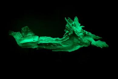 Adamite|EsculturadeCarmma| Compra arte en Flecha.es