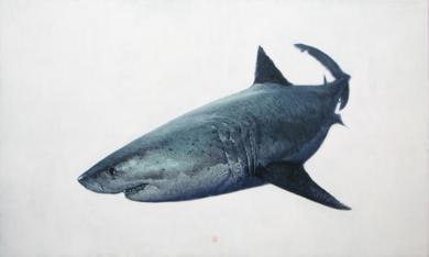 Carcharodon Carcharias|PinturadeCarlos J. Márquez| Compra arte en Flecha.es