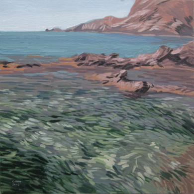 Cabo de Gata PF 2|PinturadeCarlos J. Márquez| Compra arte en Flecha.es