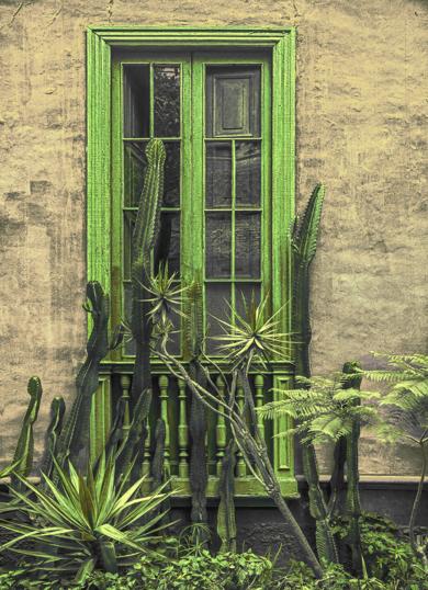 Window, Lima, 2019|FotografíadeAndy Sotiriou| Compra arte en Flecha.es