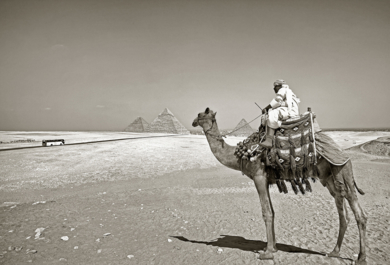 Pyramids, Giza, Cairpo, Egypt|FotografíadeAndy Sotiriou| Compra arte en Flecha.es
