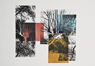 El bosque translúcido 1|Obra gráficadeJosep Pérez González| Compra arte en Flecha.es