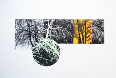 El bosque translúcido 16|Obra gráficadeJosep Pérez González| Compra arte en Flecha.es