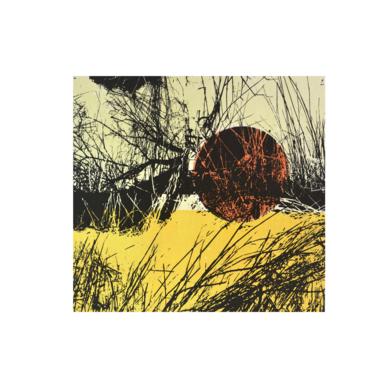 El bosque translúcido 28|Obra gráficadeJosep Pérez González| Compra arte en Flecha.es