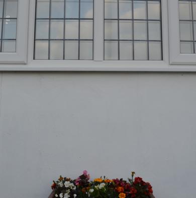Hablando de flores|FotografíadeLizmenta| Compra arte en Flecha.es