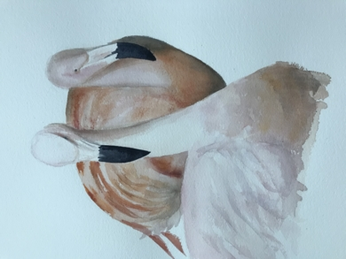 Flamencos|PinturadeChela Grijelmo| Compra arte en Flecha.es