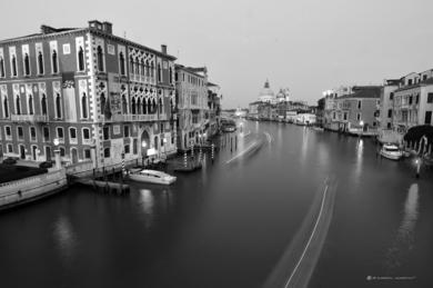 Ponte di Rialto - curvisme  11|FotografíadeRICHARD MARTIN| Compra arte en Flecha.es