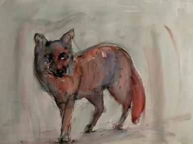 Zorro|DibujodeOliverPlehn-Artist| Compra arte en Flecha.es