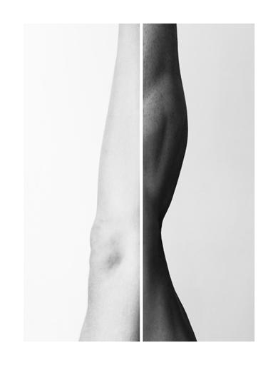 Metamorphosis III|Fotografíadealbametzger| Compra arte en Flecha.es
