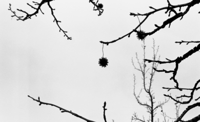 18:20, Inire (serie)|FotografíadePaula González| Compra arte en Flecha.es