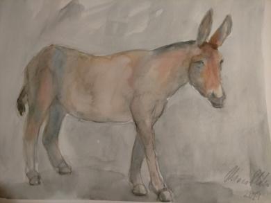 Burro VIII|DibujodeOliverPlehn-Artist| Compra arte en Flecha.es