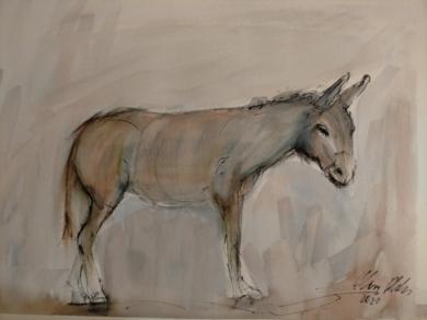 Burro 2|DibujodeOliverPlehn-Artist| Compra arte en Flecha.es