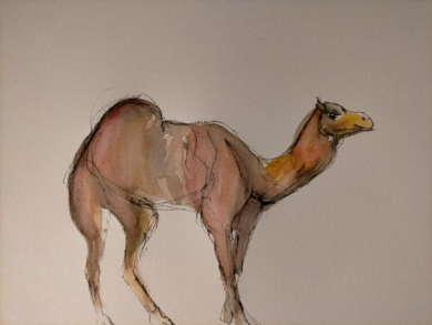 Dromedario|DibujodeOliverPlehn-Artist| Compra arte en Flecha.es