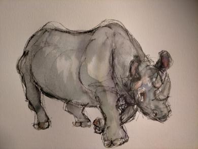 Rinoceronte|DibujodeOliverPlehn-Artist| Compra arte en Flecha.es