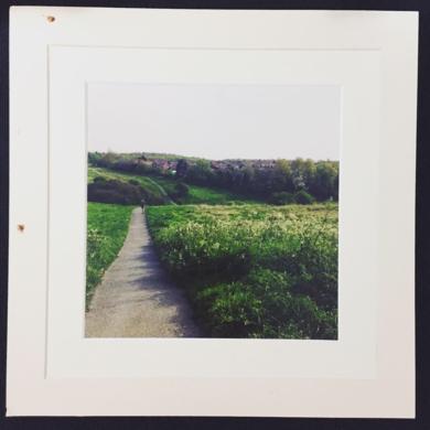 wild in fall│acid-free photo paper│printed and produced in the UK│origin|FotografíadeJHIH YU CHEN| Compra arte en Flecha.es