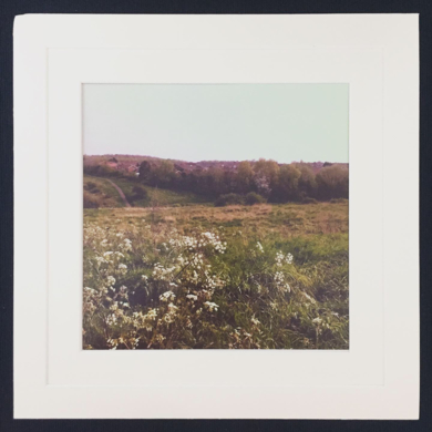 Ode to Autumn│acid-free photo paper│printed and produced in the UK│origin|FotografíadeJHIH YU CHEN| Compra arte en Flecha.es