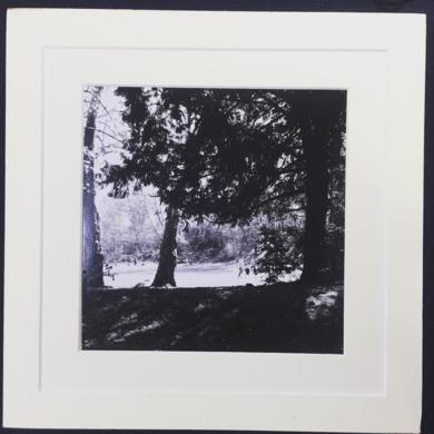 Summer walk│acid-free photo paper│printed and produced in the UK│origin|FotografíadeJHIH YU CHEN| Compra arte en Flecha.es