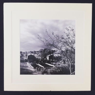 Greenhouse field in city│acid-free photo paper│printed and produced in the UK│Origin|FotografíadeJHIH YU CHEN| Compra arte en Flecha.es