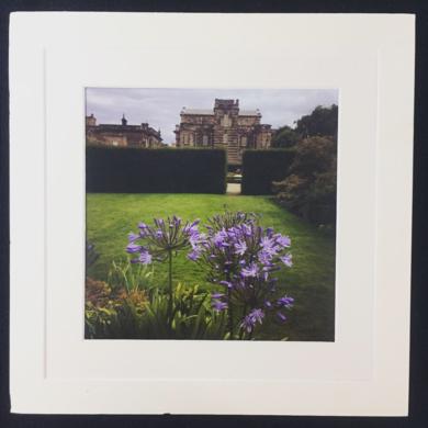 English Garden2│acid-free photo paper│printed and produced in the UK│origin|FotografíadeJHIH YU CHEN| Compra arte en Flecha.es