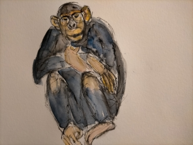 Chimpancé|DibujodeOliverPlehn-Artist| Compra arte en Flecha.es