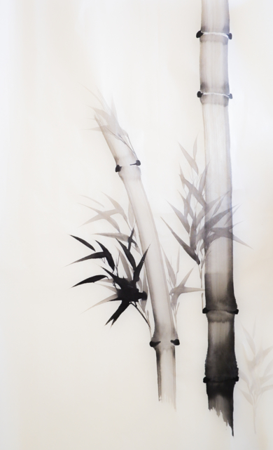 Bambú Nº 3|DibujodeLuciana Rago Ferrón| Compra arte en Flecha.es