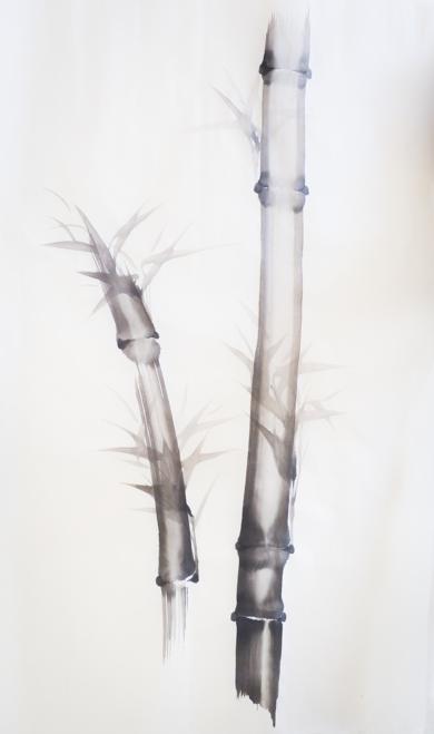 Bambú Nº 8|DibujodeLuciana Rago Ferrón| Compra arte en Flecha.es