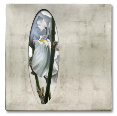 Lirios blancos|PinturadeEnrique González| Compra arte en Flecha.es