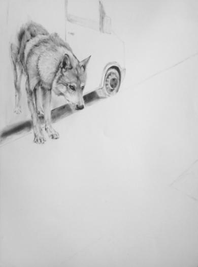 Brecha de silencio II|DibujodeMónica Torres| Compra arte en Flecha.es