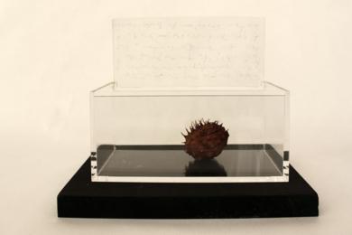 Eso que guardas con ahínco|EsculturadeMarcela Jardón| Compra arte en Flecha.es